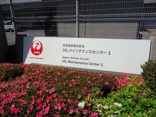 haneda_0006.jpg